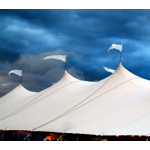 Safe from the storm.