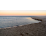 Shark Waters/Dusk.